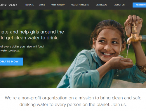 BEST NONPROFIT WEBSITES OF 2013